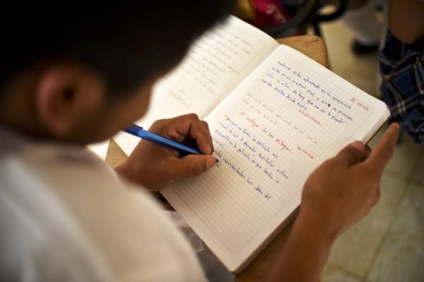 El problema de cobertura escolar según encuesta de Ibagué Cómo Vamos 2016