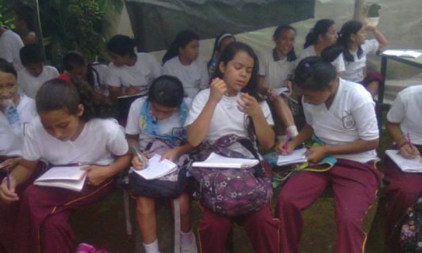 Ibagué no logra el objetivo de universalizar la educación primaria, según Pnud