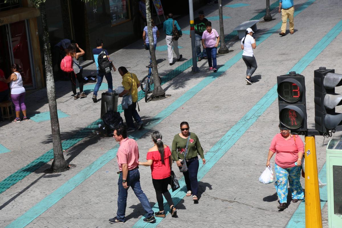Población en Ibagué: Dinámica y estructura