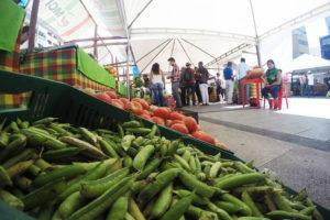 Inflación e ingreso en Ibagué