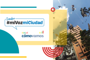 Encuesta Virtual Ibagué – Primera entrega 2020